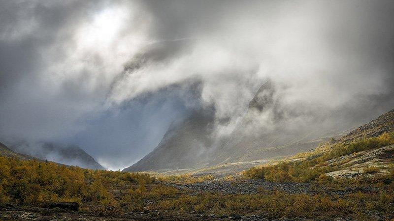 paisaje boreal
