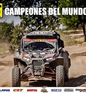 campeones t3